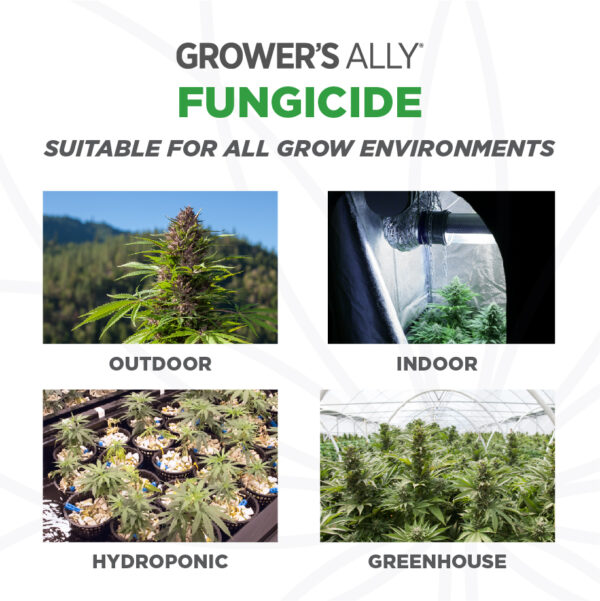 Grower's Ally Fungicide is suitable for use in all grow environments. Grower's Ally Fungicide is an OMRI Listed® fungicide and bactericide for use on cannabis and hemp.