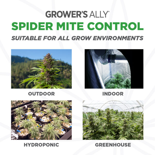 Grower's Ally Spider Mite Control is suitable for use in all grow environments. Grower's Ally Spider Mite Control is an OMRI Listed® insecticide, miticide and repellent for use on cannabis and hemp.